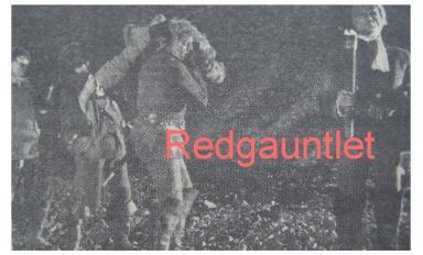 Beste roulette website